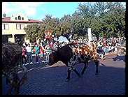 Stockyards12