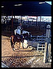 Stockyards16